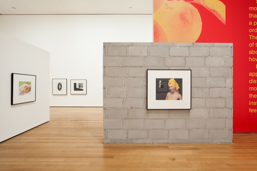 Installation view of Christopher Williams: The Production Line of Happiness, The Museum of Modern Art, 2014. Photo by Jonathan Muzikar. © The Museum of Modern Art, New York